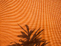 Leaves shadow on fabric texture of tree curtain as background Stock Photography