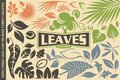 Leaves symbols, graphics, icons,emblems, logos and design elements set