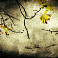 Leaves vintage background Stock Photo