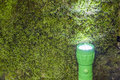 Led flashlight on the moss covered ground placed vertical Stock Photography