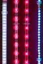 Led light tapes Stock Images