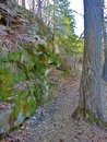 The ledges of grand ledge michigan rocky covered in moss in Royalty Free Stock Photos
