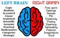 Left right brain