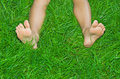 Legs are in a grass female green Royalty Free Stock Photos