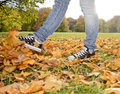 Legs playing with leaves autumn Royalty Free Stock Photo