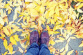 Legs and shoes and yellow leaves at autumn Royalty Free Stock Photo