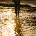 Legs of walking man in the water at the beach in backlight Stock Photos