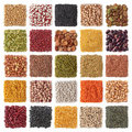 Legume Royalty Free Stock Photo