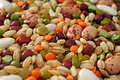 Legumes and cereals Royalty Free Stock Photo