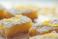 Lemon bars zesty sweet with garnish and confectioner s sugar Royalty Free Stock Image