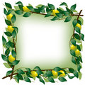 Lemon branch frame Royalty Free Stock Photography