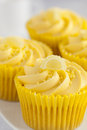 Lemon cupcakes with butter cream swirl and candid fruit decoration Royalty Free Stock Photo
