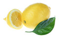 Lemon cut a leaf on a white background. Stock Photos