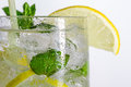 Lemon drink with ice cubes Stock Photo