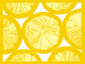 Lemon fruit slice Royalty Free Stock Image