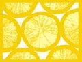 Lemon fruit slice Royalty Free Stock Image