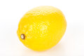 Lemon fruit on white Royalty Free Stock Photo