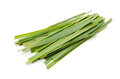 Lemon grass Royalty Free Stock Photography