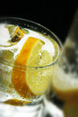 Lemon and Ice Cubes in Soda Water Royalty Free Stock Photography