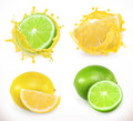 Lemon and lime juice. Fresh fruit, vector icon