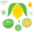 Lemon lime vector illustration eps Stock Photography