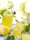 Lemon liqour (limoncello) Stock Photography