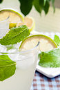 Lemon and mint Royalty Free Stock Photos