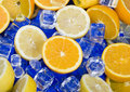 Lemon & Orange Stock Image