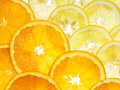 Lemon and orange sliced ripe juicy oranges background Royalty Free Stock Image