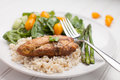 Lemon Pepper Chicken with Rice Royalty Free Stock Photo