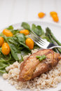 Lemon Pepper Chicken with Rice vertical view Royalty Free Stock Photo