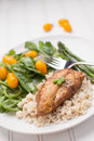 Lemon Pepper Chicken with Rice on white Royalty Free Stock Photo