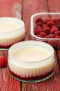 Lemon possets with raspberries Stock Images