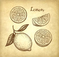 Lemon set on old paper background