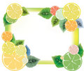 Lemon slices  and green leaves frame Royalty Free Stock Photo