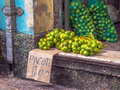 Lemon to sell on the street free fair ver o peso belem amazon brazil Royalty Free Stock Photos