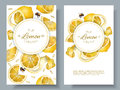 Lemon vertcal banners Royalty Free Stock Photo
