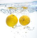 Lemon in the water Royalty Free Stock Photography
