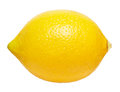 Lemon on a white background Royalty Free Stock Image