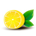 Lemon on a white background Royalty Free Stock Photography