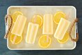 Lemon yogurt popsicles in rustic tray with fresh fruit slices Royalty Free Stock Photo