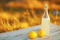 Lemonade bottle of with nature background Royalty Free Stock Images