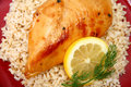 Lemonade Chicken on Brown Rice Stock Photo