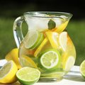 Lemonade jug with fresh outdoor in summer day Stock Photos