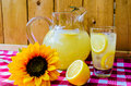 Lemonade with sliced lemons pitcher and sunflower on gingham table cloth Royalty Free Stock Images