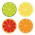 Lemone, lime, orange icon. Citrus set. Refreshing drink. Vector illustration.