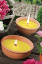 Lemongrass candles for mosquito's prick Royalty Free Stock Photo