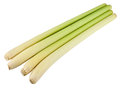 Lemongrass four sticks of isolated on white with clipping path Stock Images