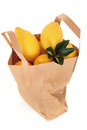 Lemons in a Bag Royalty Free Stock Images