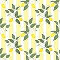Lemons citrus seamless pattern lemony leaves on striped background Stock Photos